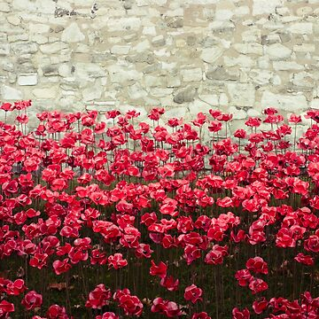 Tower Poppies 04A by vanroy