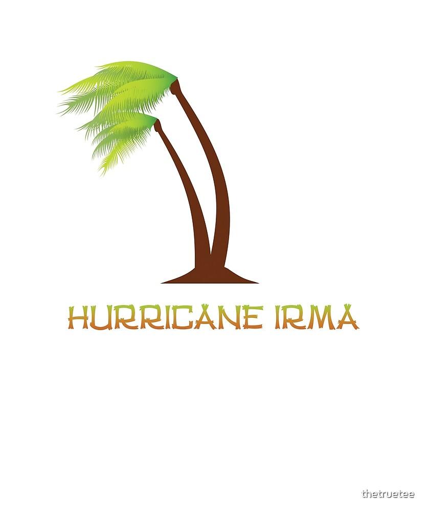 Hurricane Irma  by thetruetee