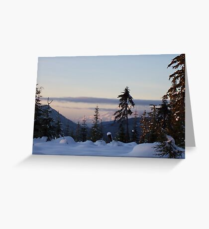 STANDING AT THE BASE OF MT. ADAMS LOOKING AT MT. RAINIER Greeting Card