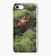 Color Against the Moss iPhone Case/Skin