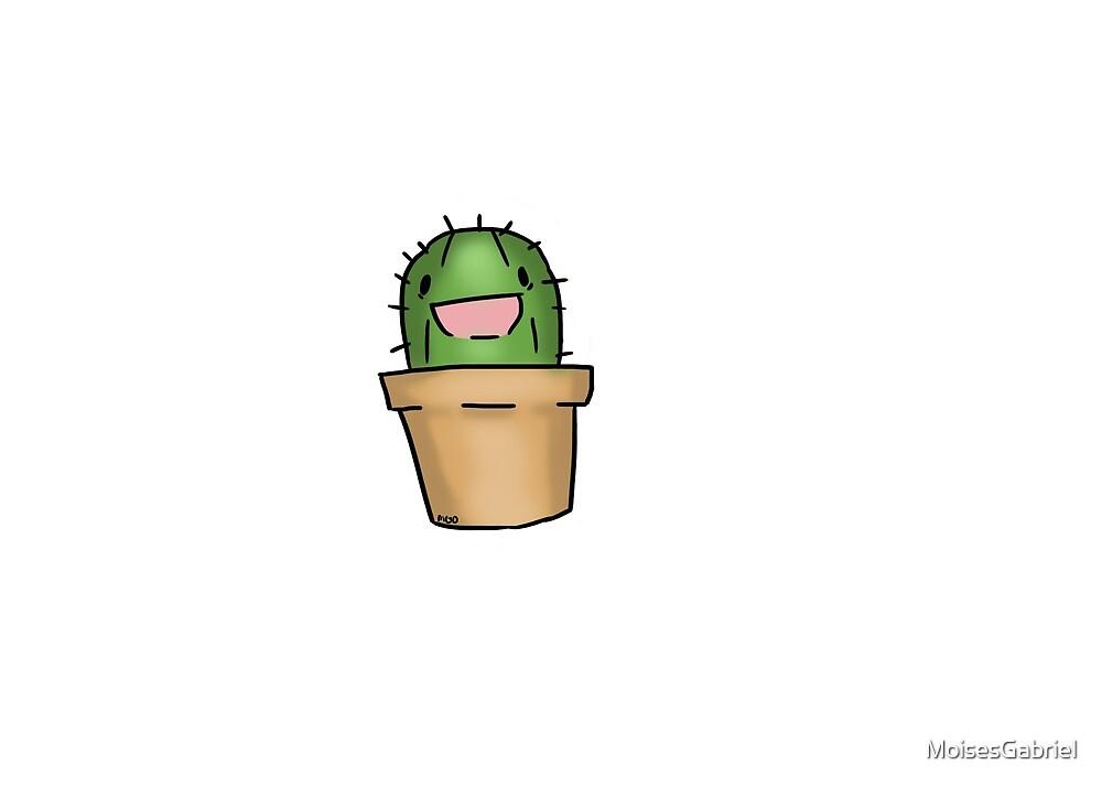 Little Baby Cactus by MoisesGabriel