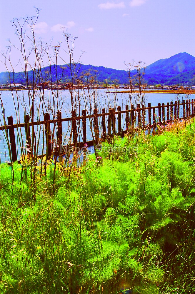 Fence Along the Bay by Nancy Stafford