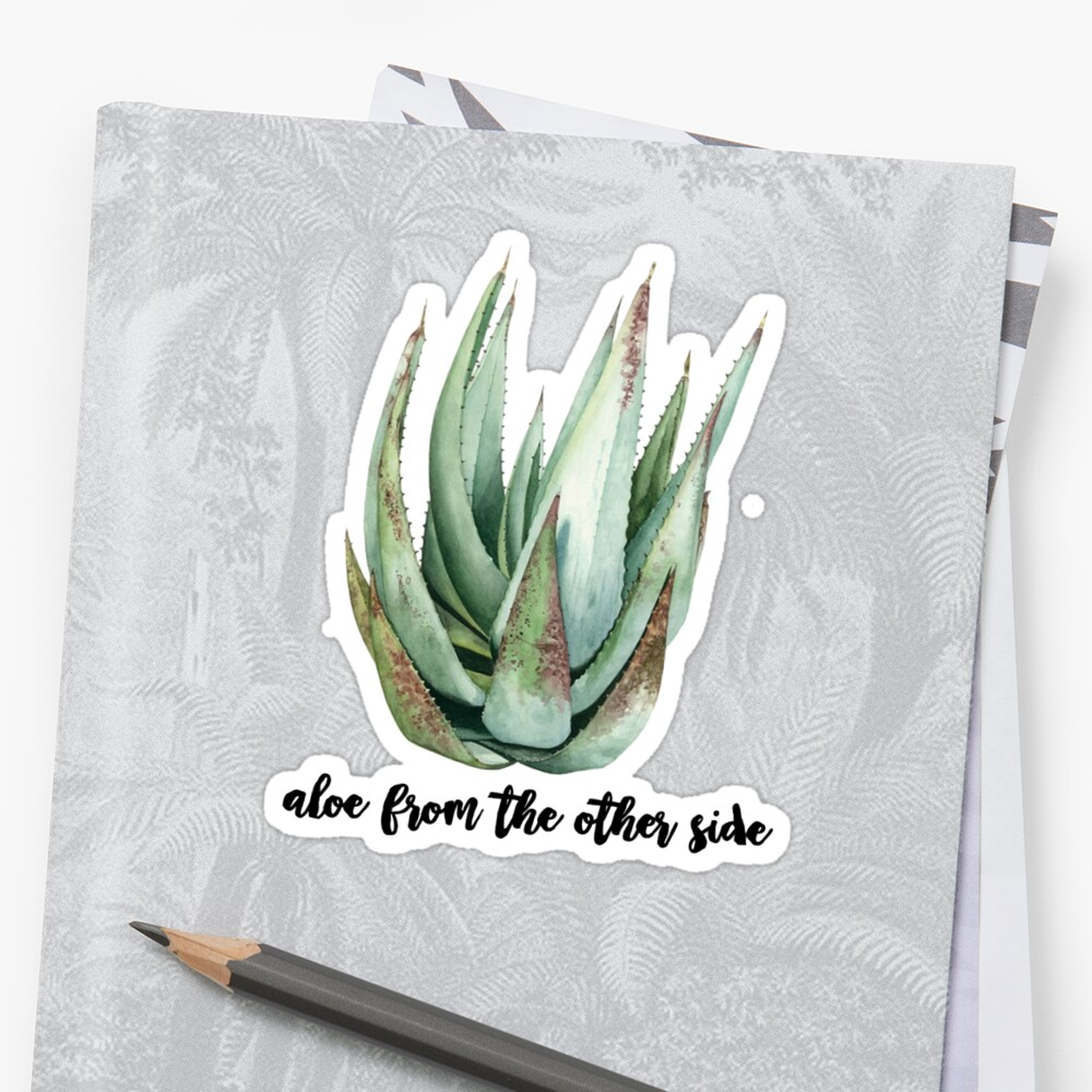aloe from the other side by Daria Smith