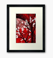 Nature's Kingdom Framed Print