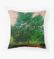 On A Beauiful Day. Throw Pillow