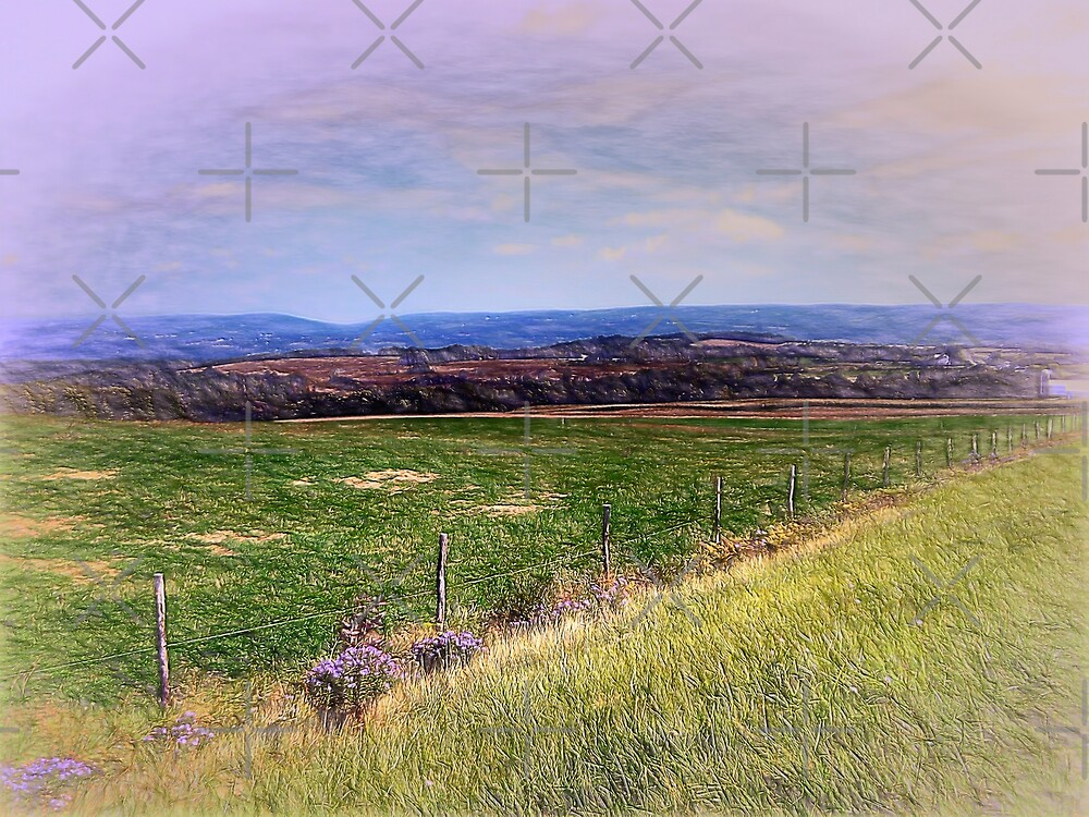 Hilltop View by Leslie Montgomery