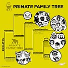 Primate Family Tree by PepomintNarwhal