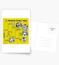 Primate Family Tree Postcards