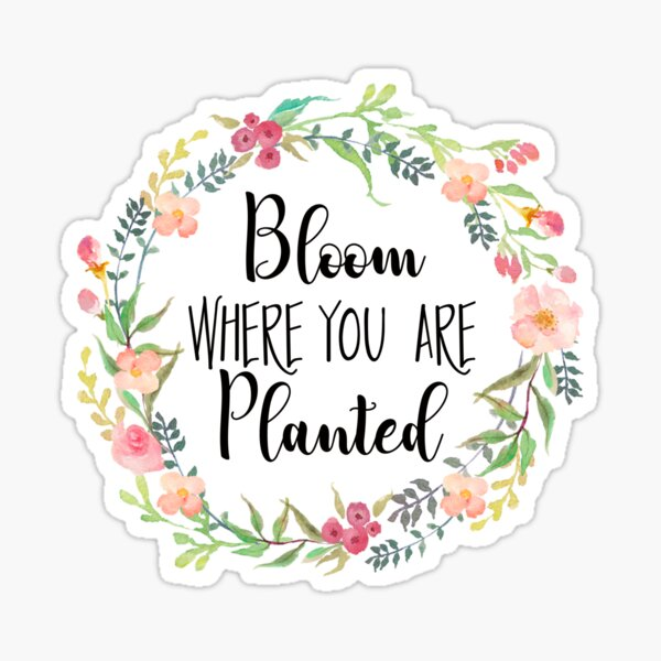 Bloom Where You Are Planted.  Sticker