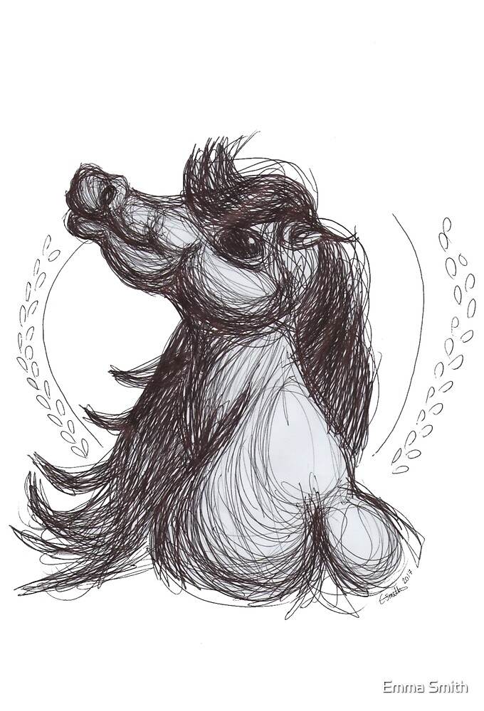 Horse Illustration by Emma Smith