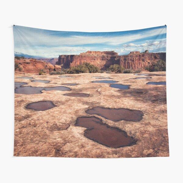 High desert Tapestry