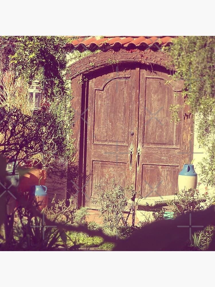 Brown door, Rustic door by PicsByMi