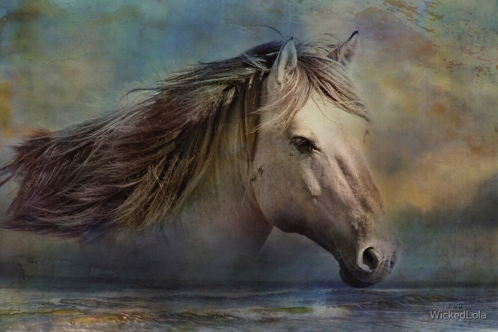 Sea Horse by WickedLola