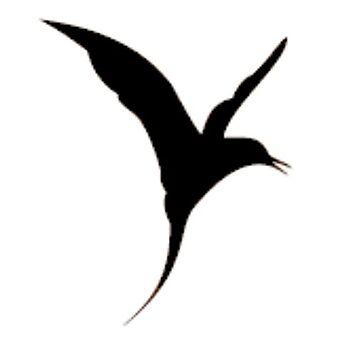 Tern by VerdantWildlife