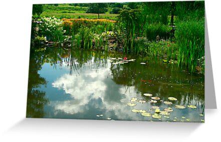Natures Garden & Reflections by Deborah  Benoit