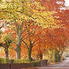 Autumn! by Mark Bateman
