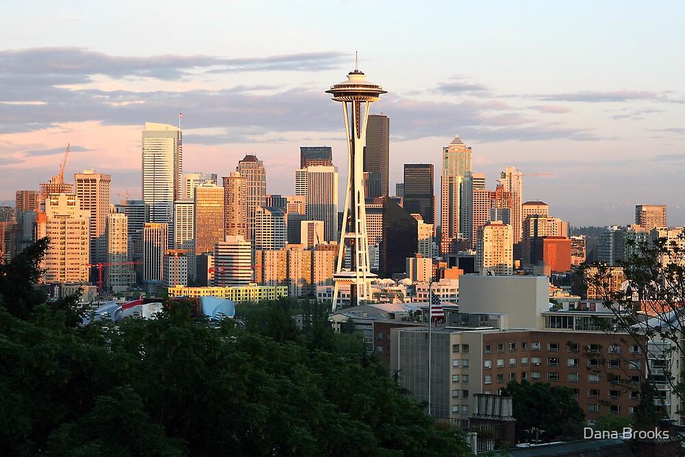 Seattle Sunset by Dana Brooks