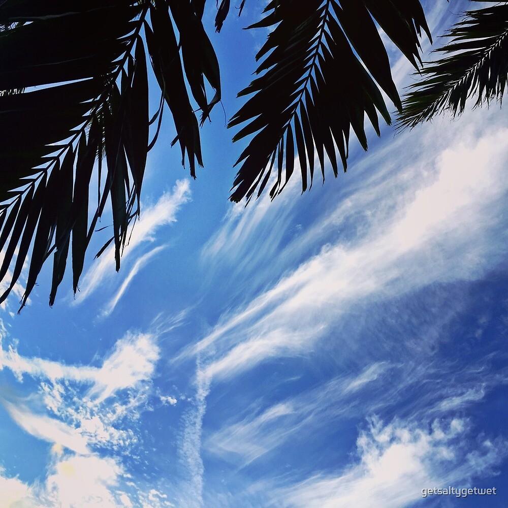 Sky Palm by getsaltygetwet
