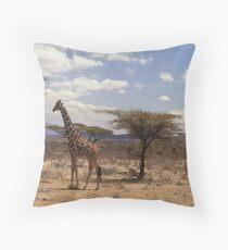 Reticulated Giraffe (Camelopardalis reticulata) Throw Pillow