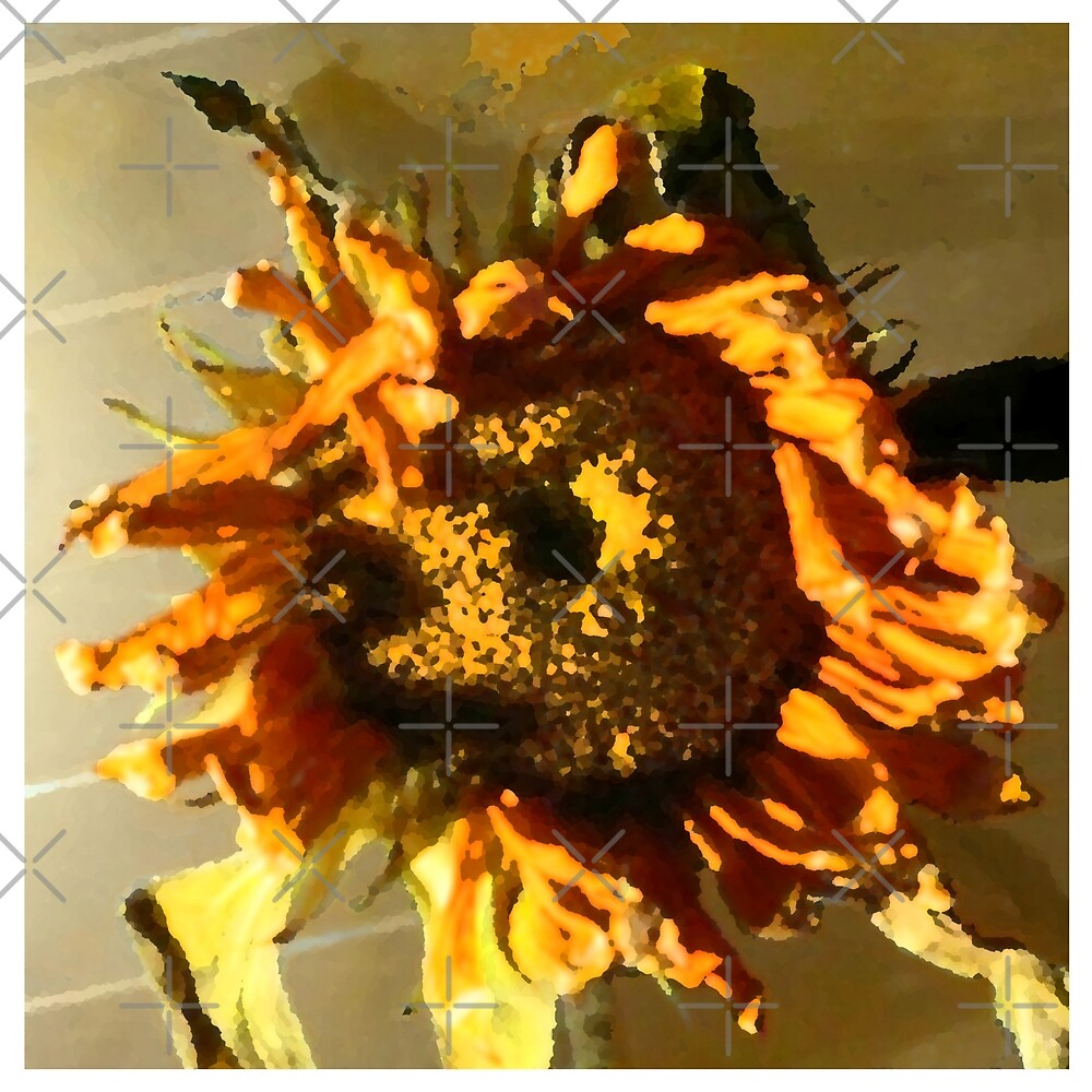 Yellow Sunflower by David K  Bruner