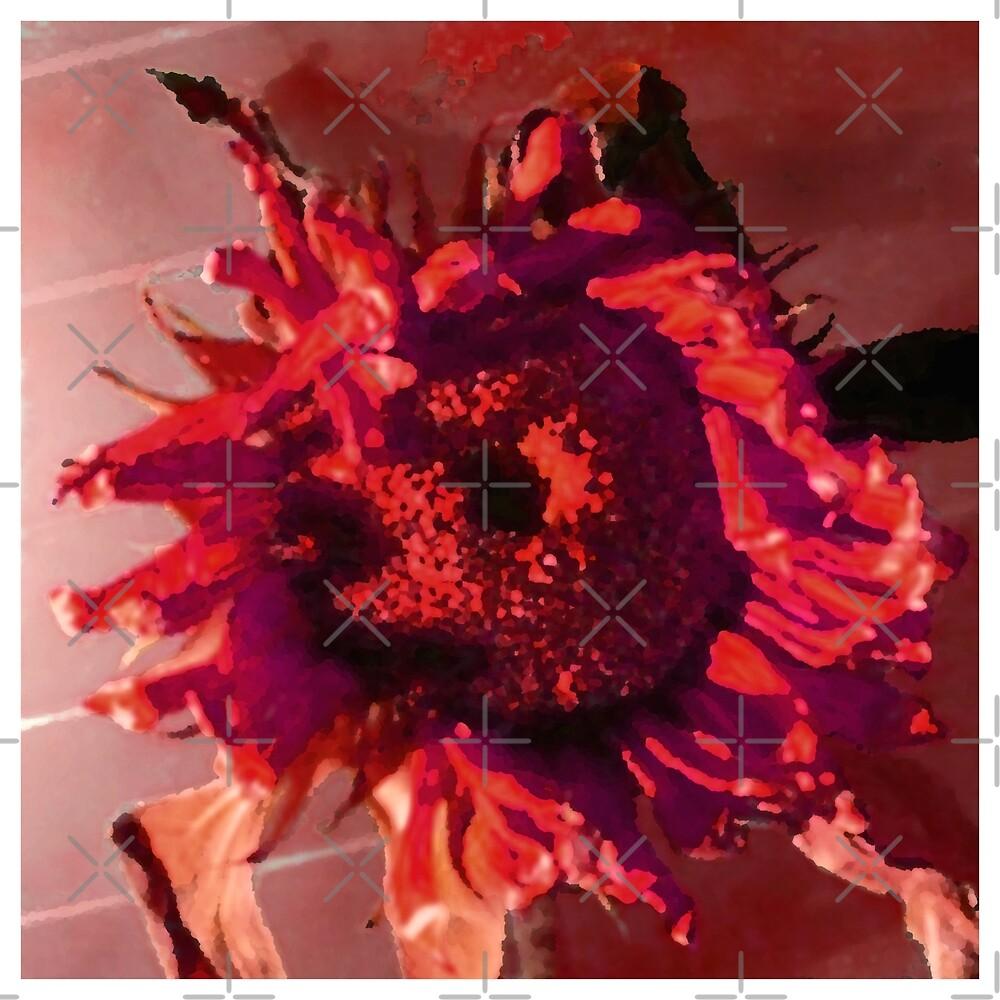 Red Sunflower by David K  Bruner