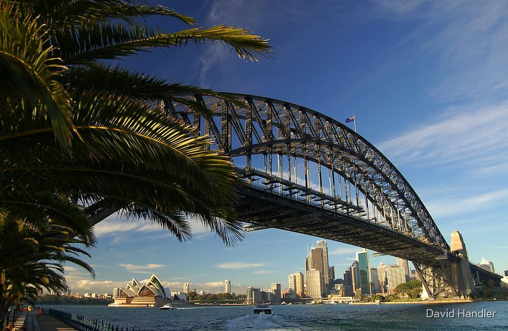Sydney Harbour Bridge by David Handler