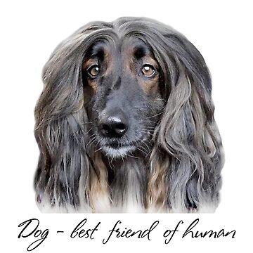 Dog - best friend of human by anushka777