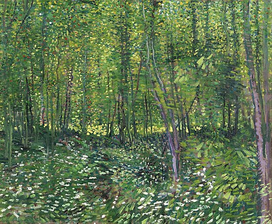 Vincent Van Gogh Trees and Undergrowth by fineearth