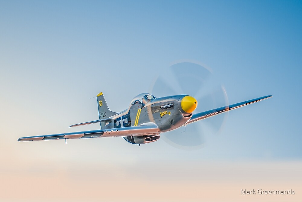 USAAF P-51D Mustang by Mark Greenmantle