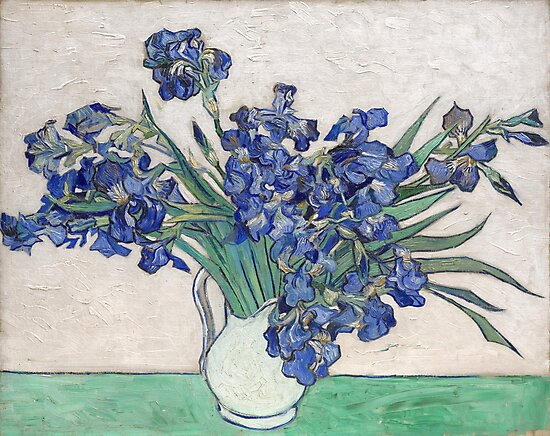 Van Gogh, Irises, 1888 by fineearth