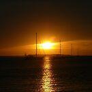 Goodnight Sunshine ! by Trish Meyer