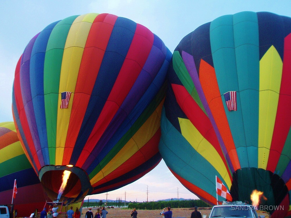 Hot Air Balloons by SANDRA BROWN