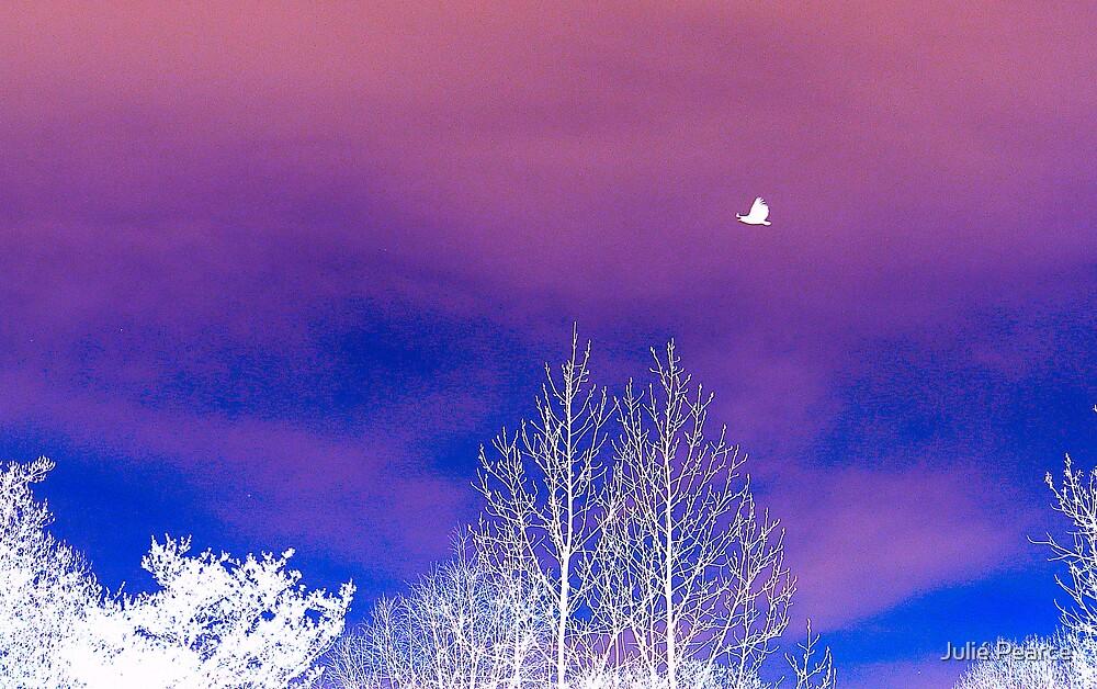 The Winter Raven by Julié Pearce