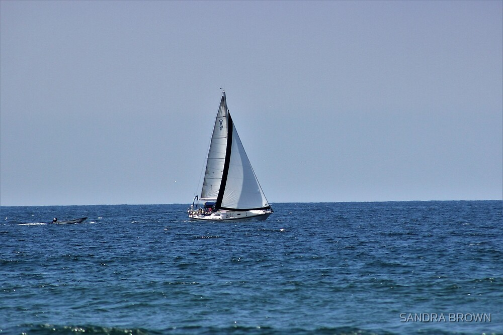 Sailboat by SANDRA BROWN