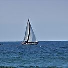 Sailboat by SANDRA BROWN