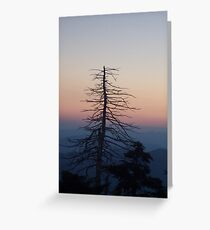 Clingsman Point Greeting Card