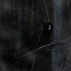 Witch by Jennifer Rhoades