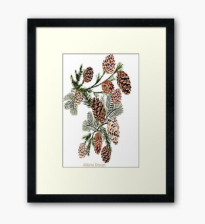 Pine cones ( 538 Views) Framed Print