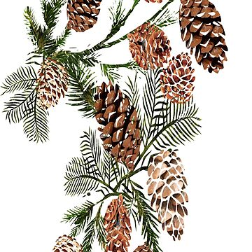 Pine cones ( 554 Views) by aldona