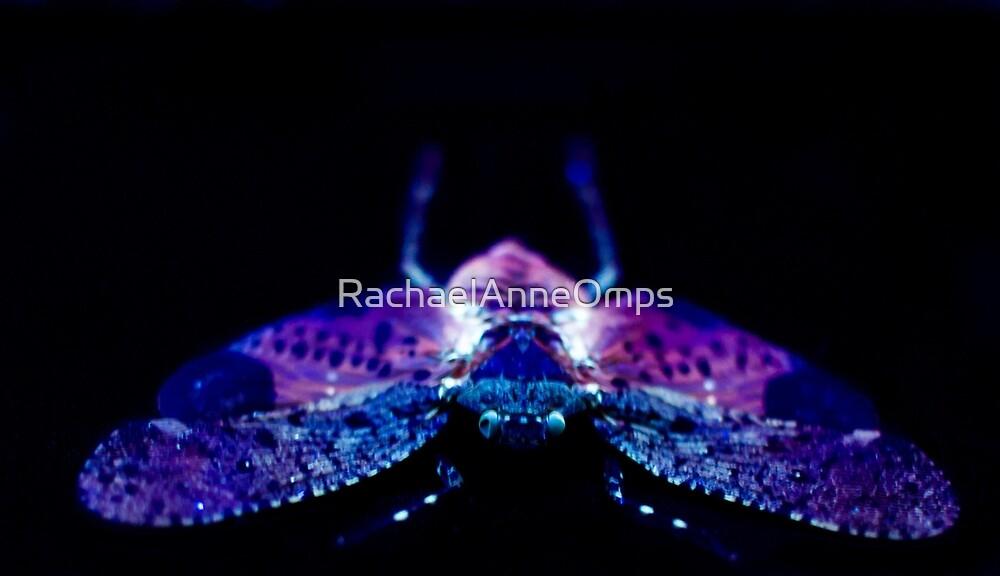 Glow 2 by RachaelAnneOmps