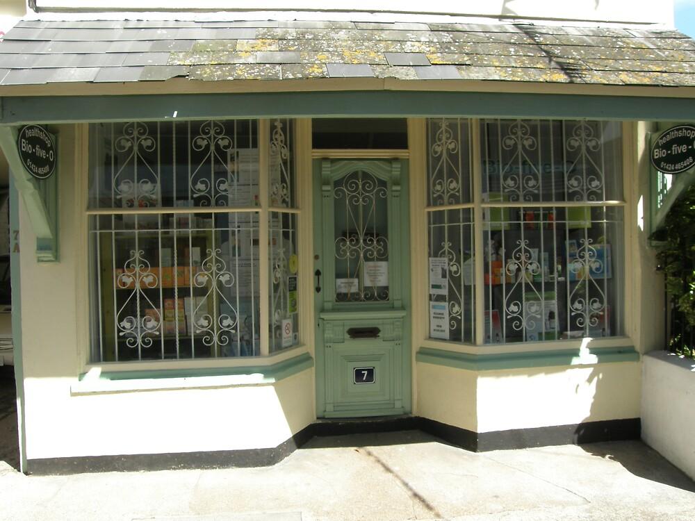 Little shop by KatieBird