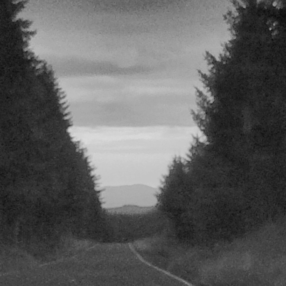 Driving to a Colorless Sunset by GrayTotality