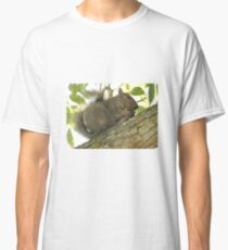 Squirrel in Ash Tree with Walnut Classic T-Shirt