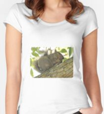 Squirrel in Ash Tree with Walnut Women's Fitted Scoop T-Shirt