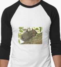 Squirrel in Ash Tree with Walnut Men's Baseball ¾ T-Shirt