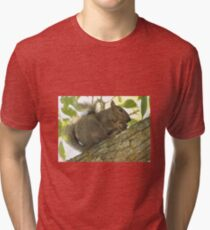 Squirrel in Ash Tree with Walnut Tri-blend T-Shirt