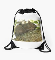 Squirrel in Ash Tree with Walnut Drawstring Bag