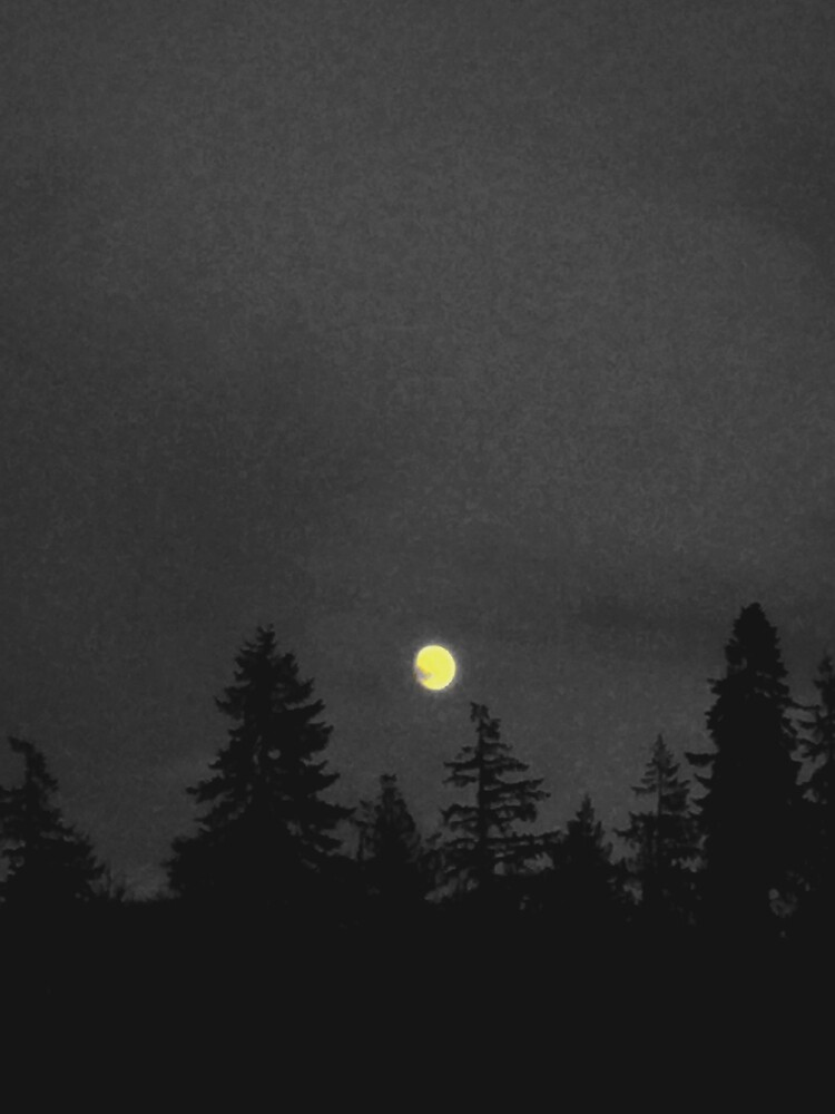 Rising Moon In The PNW by GrayTotality