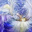 Wild Iris Blue by Carol  Cavalaris