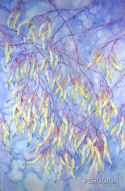 Beneath Blue Mountain Gums III © Patricia Vannucci 2008 by PERUGINA